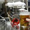 De la «tripa cervecera» a las dietas hiperproteicas, falsos mitos de la alimentación