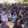 Nigeria libera a 293 mujeres y niñas secuestradas por Boko Haram