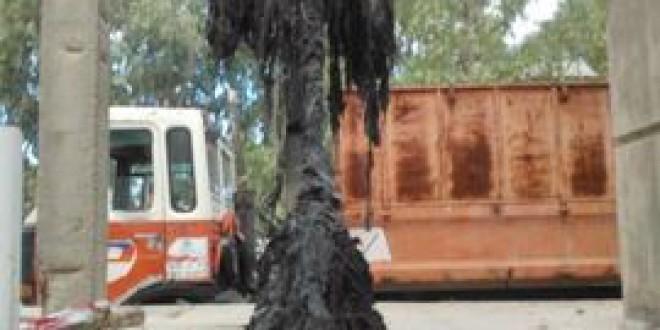 Aguasvira alerta del atasco en la red de saneamiento a consecuencia de las toallitas húmedas