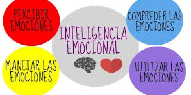 VIDEOS PARA EDUCAR LA INTELIGENCIA EMOCIONAL