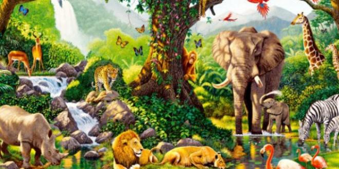 ¿Cuantas especies habitan la Tierra? Último balance: 2.339.460