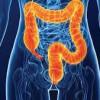 Santa Fe implanta el programa de cribado de cáncer de colon y recto