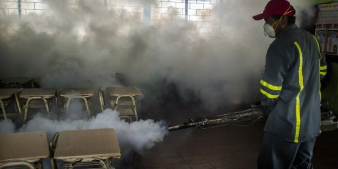 La OMS decide si declara emergencia global el virus del zika