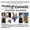 Canadá ofrece TRABAJO y RESIDENCIA GRATIS si tienes una de estas profesiones.