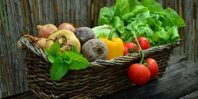 Un estudio de UGR concluye que las verduras fritas con aceite de oliva son más saludables que cocidas