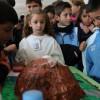 Atarfe y Albolote despiertan la 'vocación' científica de sus alumnos