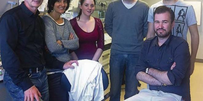 Científicos gallegos logran frenar el cáncer de mama con células del útero