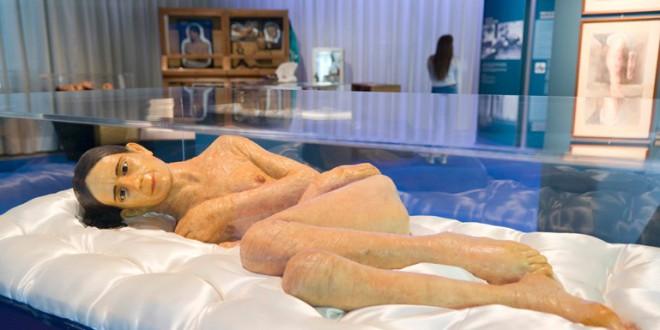 «Piel de Cera. Ceroplastias del Siglo XIX » en el Parque de las ciencias hasta septiembre