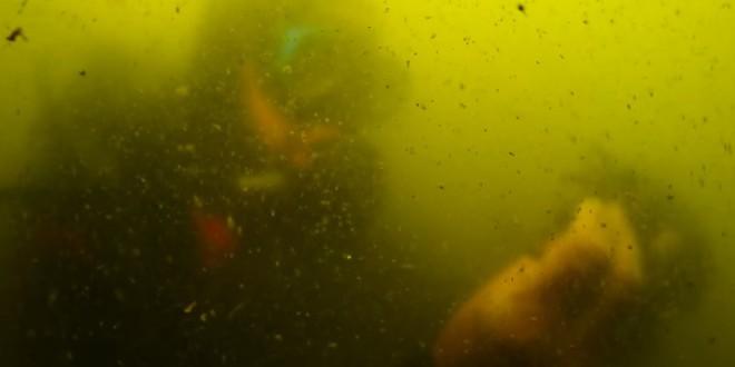 El Mar Menor, cada vez más cerca del límite