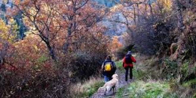 5 rutas con encanto para disfrutar del otoño en Granada