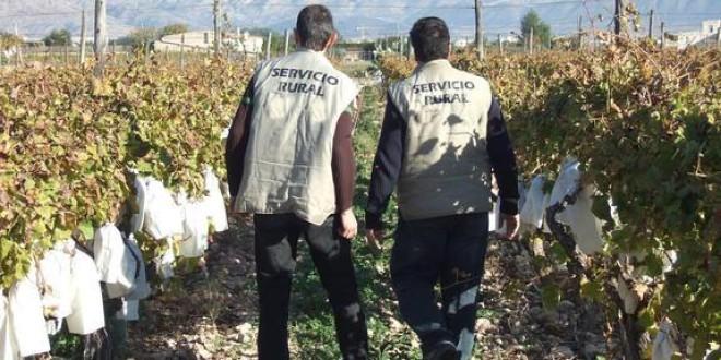 Trabajo suspende la paga mensual a jubilados 'cazados' en el campo