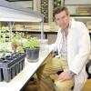 Granada cultiva el remedio para los diabéticos