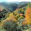 5 maravillosas rutas para disfrutar del otoño en Granada
