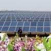 India planea que el 60% de su electricidad provenga de renovables en diez años