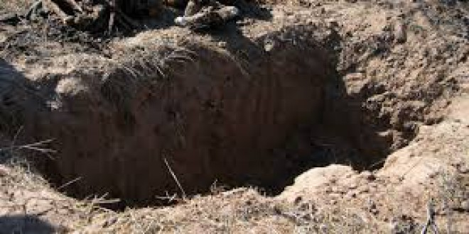 """""""¿Sabe Cebrián dónde está enterrado su padre o su abuelo? 150.000 familias no"""""""