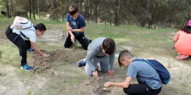 Escolares de distintos colegios de Atarfe participan en la reforestación del entorno de la ermita de los Tres Juanes