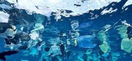 El plástico que tiramos llega hasta el círculo polar