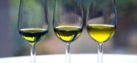 Los españoles se pasan al aceite de girasol por el alto precio del de oliva