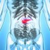 Identifican cómo se activan las enfermedades autoinmunes