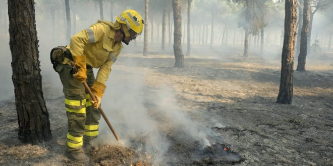 El incendio de Doñana está «bastante estabilizado», aunque aún quedan zonas calientes