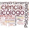 RESULTADOS PROVISIONALES DE LA FASE DEL CONCURSO- OPOSICIÓN de LA PLAZA DE PSICOLOGO/A
