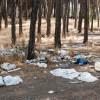 ATARFE: Jornada de voluntariado para la limpieza del pantano de Cubillas