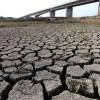 """No es la """"peor sequía en 20 años"""", será la peor de la historia de España: el desastre en datos"""