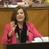 El Parlamento aprueba la Ley andaluza de Participación