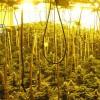 Endesa vincula los apagones de Atarfe al temporal y a los enganches para marihuana y asegura que busca soluciones