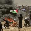 ¿QUE ESTÁ PASANDO EN GAZA?