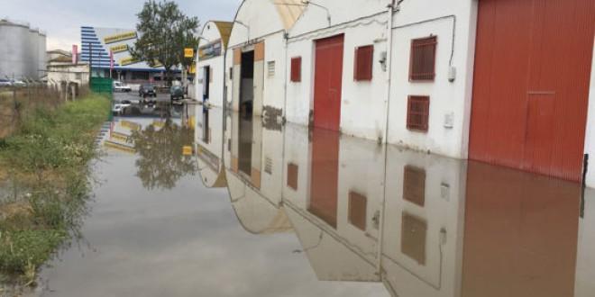 ATARFE: Oficina Municipal para la tramitación de ayudas por las inundaciones de Atarfe