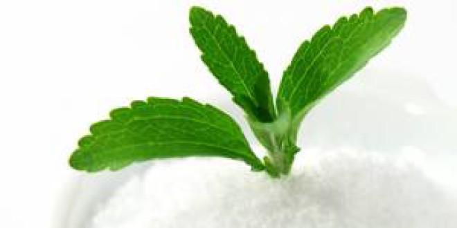 ¿Es positivo el consumo de stevia? Propiedades y beneficios