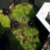 Abierto en Rotterdam el primer parque reciclado con plásticos del mar