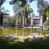 ATARFE: Limpieza y rehabilitación de la flora y fauna del estanque en el parque Ramón Gardón