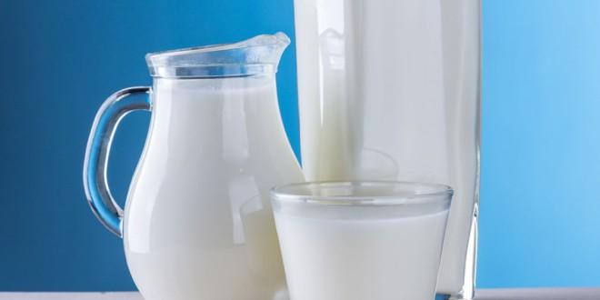 La ingesta adecuada de leche y lácteos en las diferentes etapas de la vida ayuda a prevenir enfermedades crónicas
