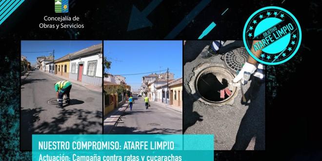 ATARFE: CAMPAÑA CONTRA RATAS Y CUCARACHAS