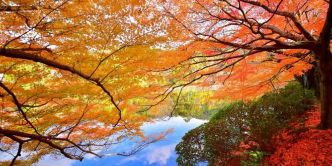 Qué es el equinoccio de otoño y por qué se produce