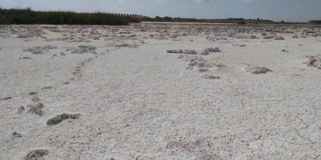 España es el país europeo con más riesgo de desertización, según un informe