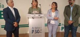 El PSOE estudia recurrir los estatutos del Consorcio de Transportes por posible incumplimiento de la ley