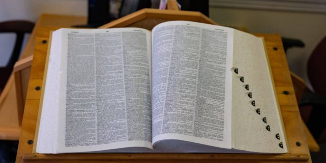 La RAE no plantea incluir hasta 2026 el concepto 'violencia de género' en el diccionario