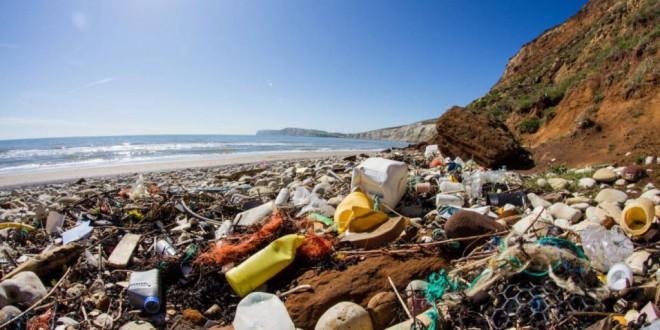Antonio Vercher: «El Tribunal de DDHH ha reconocido el derecho al Medio Ambiente como un derecho fundamental»