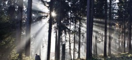Un dispositivo convierte la luz solar, el agua y el CO2 en combustible limpio