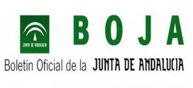 La Junta aclara la verdad sobre el whatsapp de un BOJA con las nuevas medidas de Andalucía