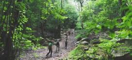 Es hora de hacer las paces con la naturaleza