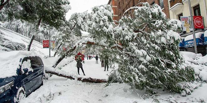 ¿Quién cubre los daños causados por la nevada?