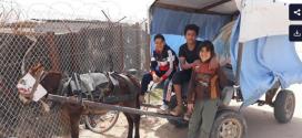 Diez años desde el levantamiento: los jóvenes del exilio sirio quieren ser dueños de su futuro