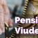 El Gobierno tendrá listo en 2022 el acceso en igualdad a la pensión de viudedad de las parejas de hecho y los matrimonios