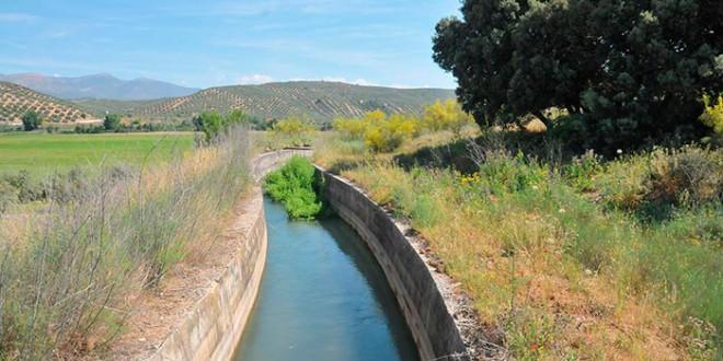 «El canal de la vía Augusta»  en los asentamientos de Medina Elvira.