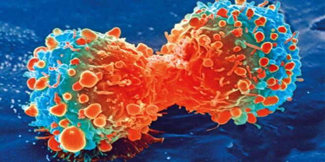 ¡Adiós quimioterapia! Españoles desarrollan generador que destruye tumores