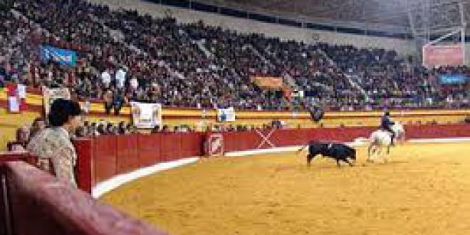 Los toros son declarados 'Bien de Interés Cultural' en Atarfe